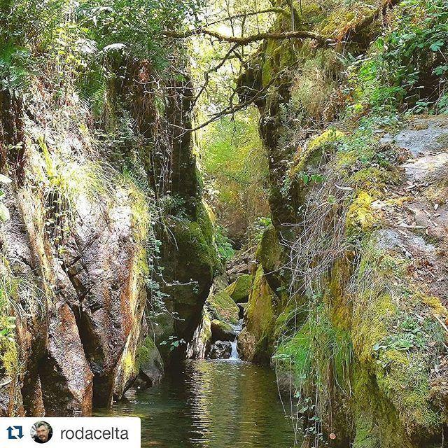 Si te gusta estar rodeado de naturaleza y visitar parajes mágicos tienes que ir al #PozoDoDemo del río Xabriña en #Pontevedra #Galicia  Fotografía  por @rodacelta  #SienteGalicia #GaliciaMáxica #GaliciaCalidade #GaliGrafías