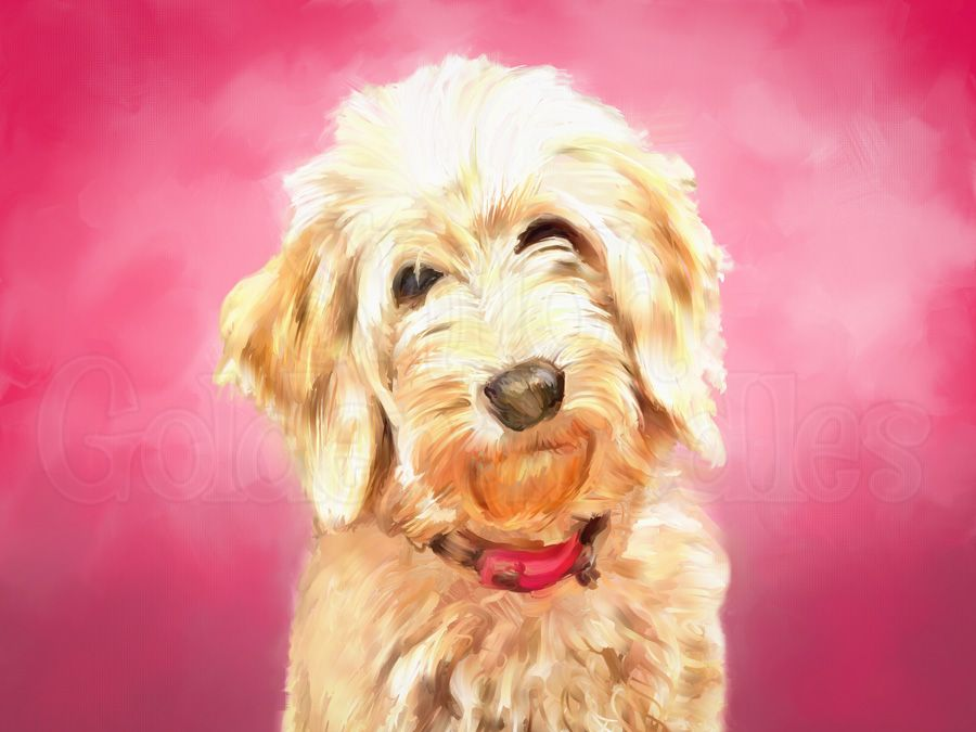 Doodle Custom Personalized Goldendoodle Labradoodle Whoodle Schnoodle Wheaten Ski Dog Gallery Wrapped CANVAS Wall Art signed
