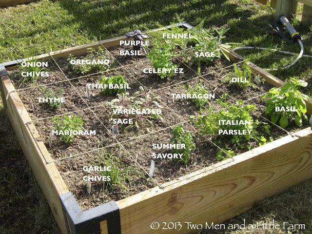 Herb Garden Layout Raised Bed