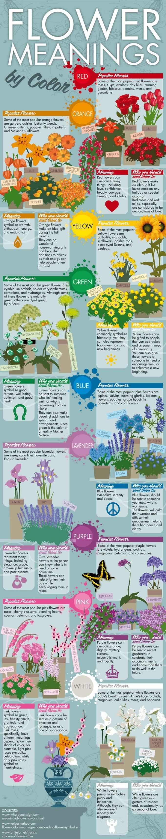 Flower Meanings By Color Feng Shui Color Infographics The Tao Of