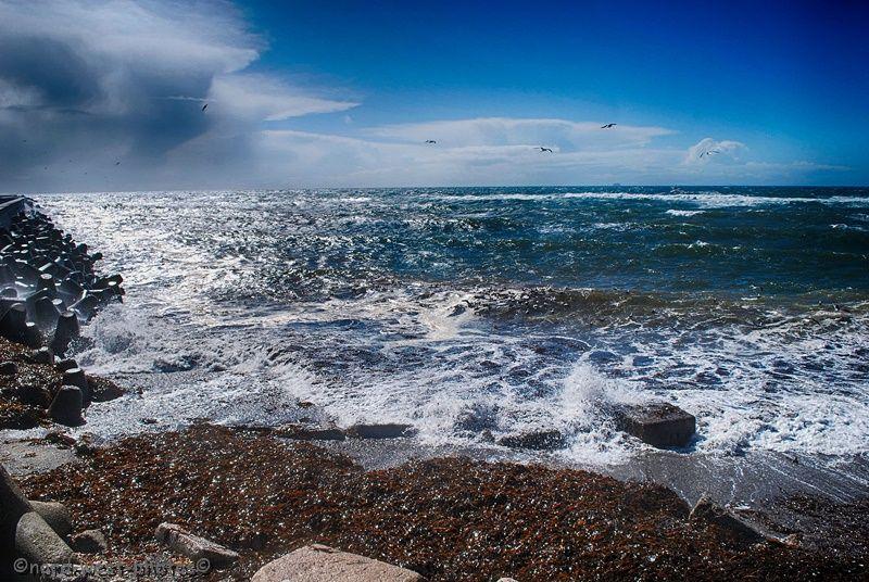 Bild 21: Ein windiger Traumtag am Wasser.