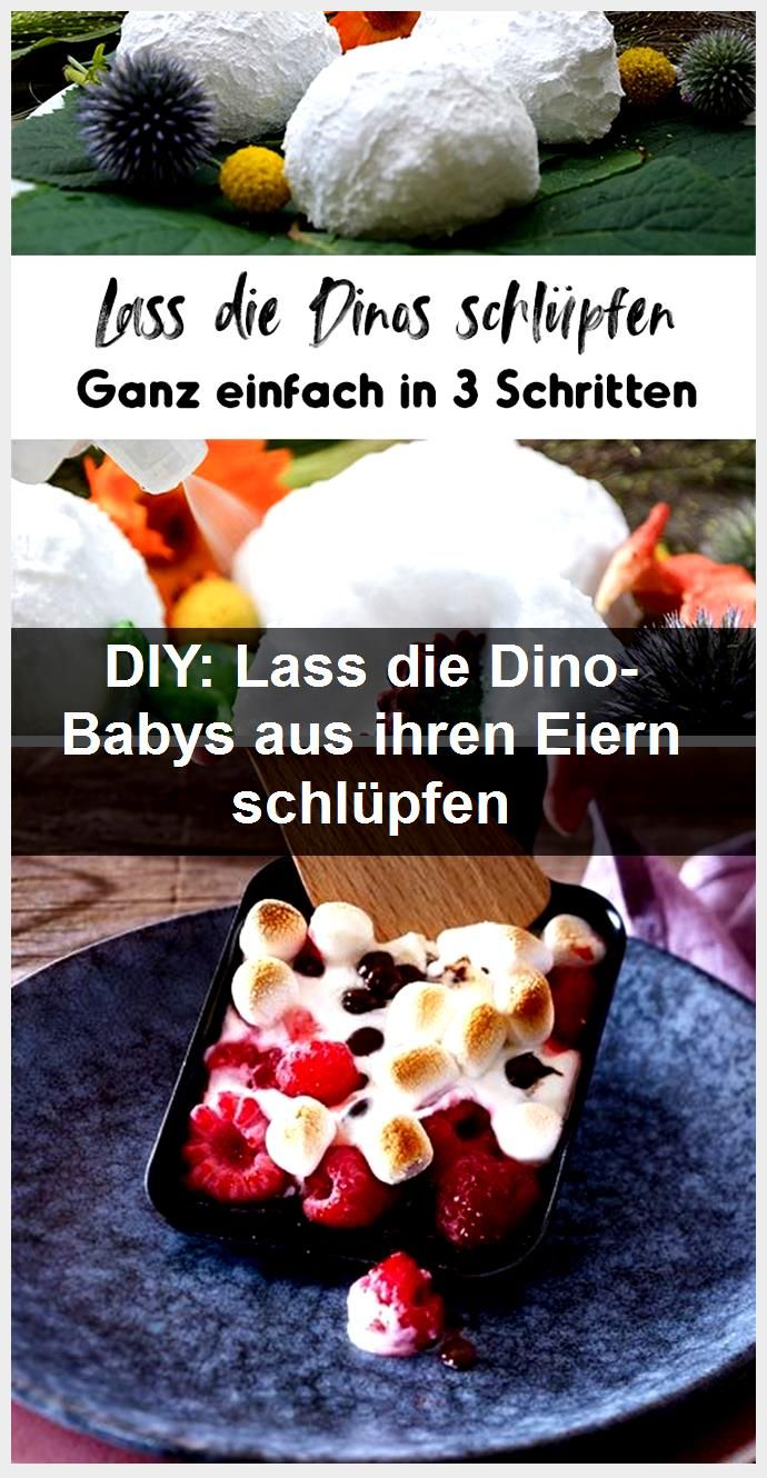 DIY Let the dinosaur babies hatch from their eggs DIY Let the dinosaur babies hatch from their eggs