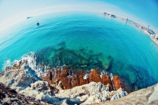 Fisheye paradise