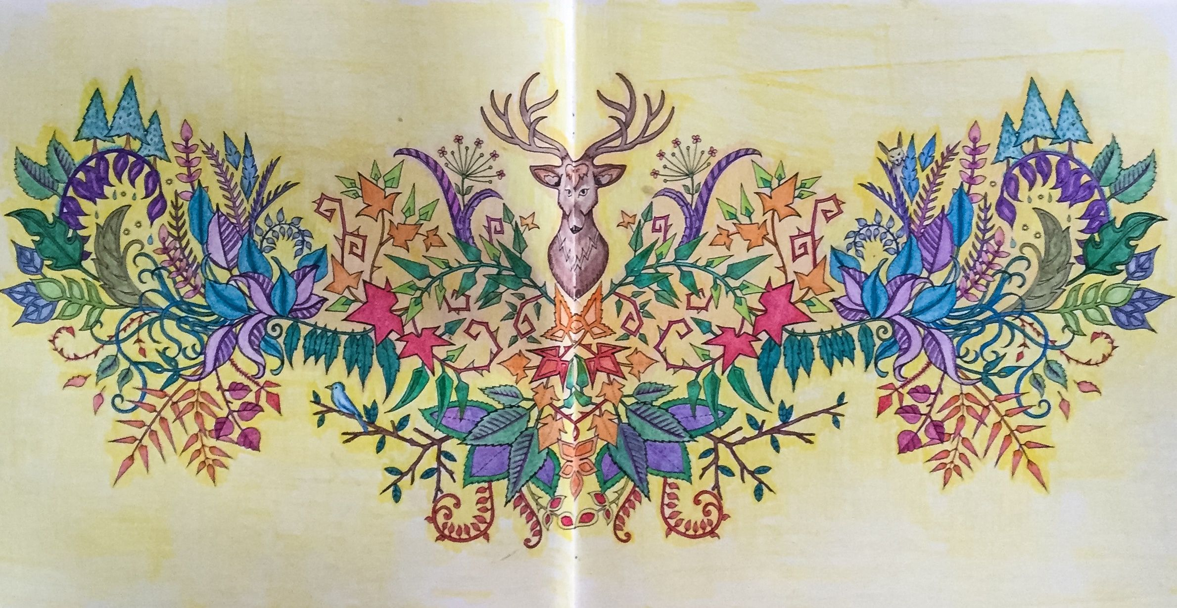 Johanna Basford Adult Colouring Enchanted Forest Deer Rabbit Bird