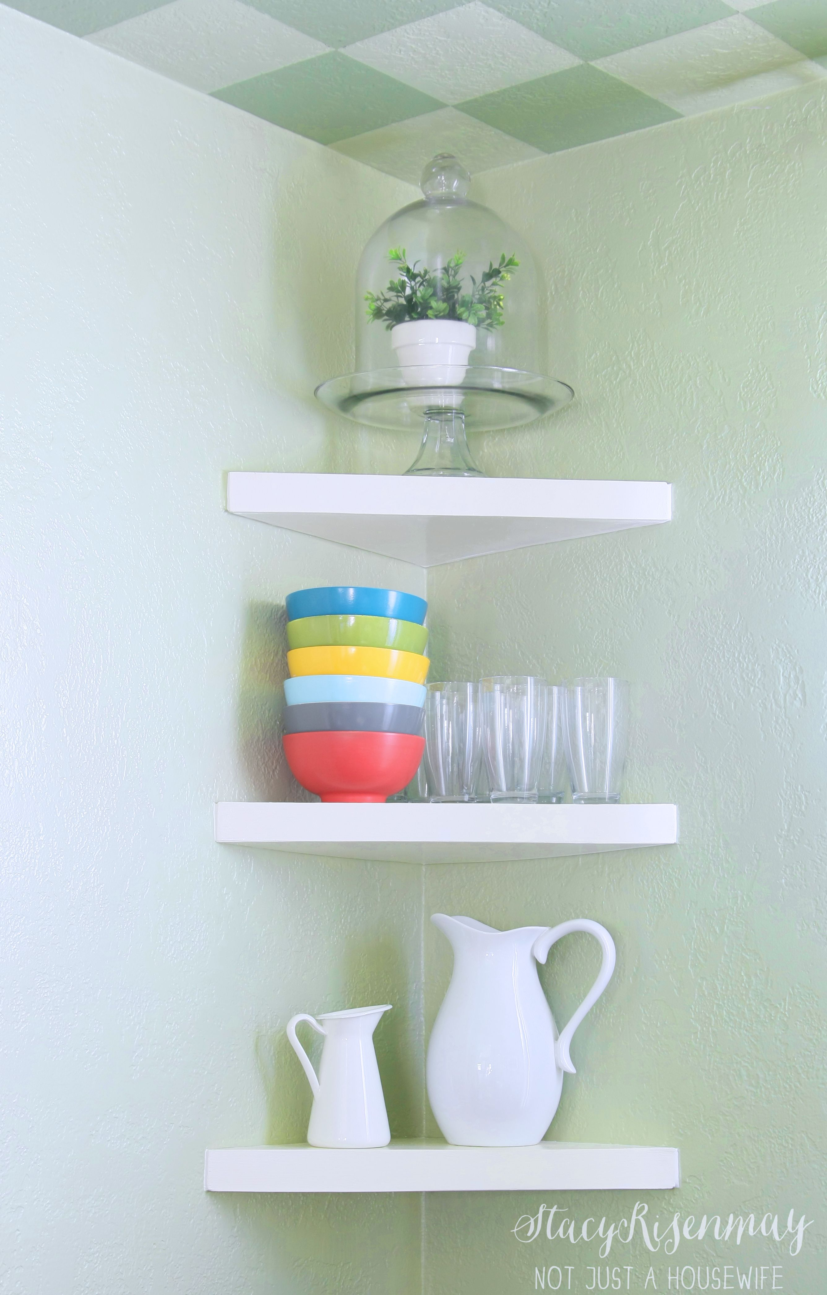 Awesome Plant In Kitchen On A High Shelf Enjoy Your Plants Inside