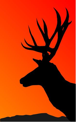 A beautiful stag silhouette Great form reference Silhouettes - reference release form