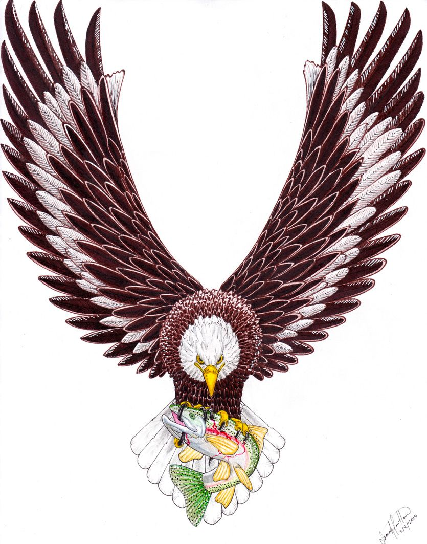 American eagle tattoos high quality photos and flash - Eagle Tattoo Designs The Eagle Is One Of The Family Members Are Generally Appreciated For Bird And Small Eyes And Sharp Vision