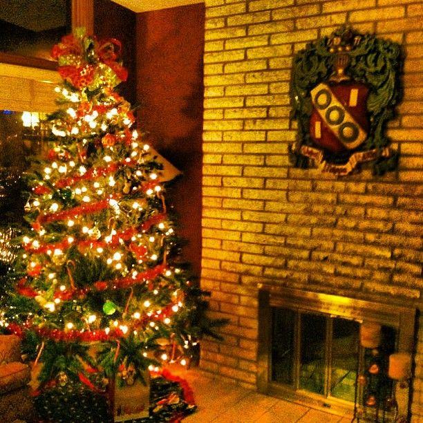 Instagram Photo By Alphagamgram Alpha Gam Gram Iconosquare Christmas Decorations Yuletide Beautiful Christmas Trees