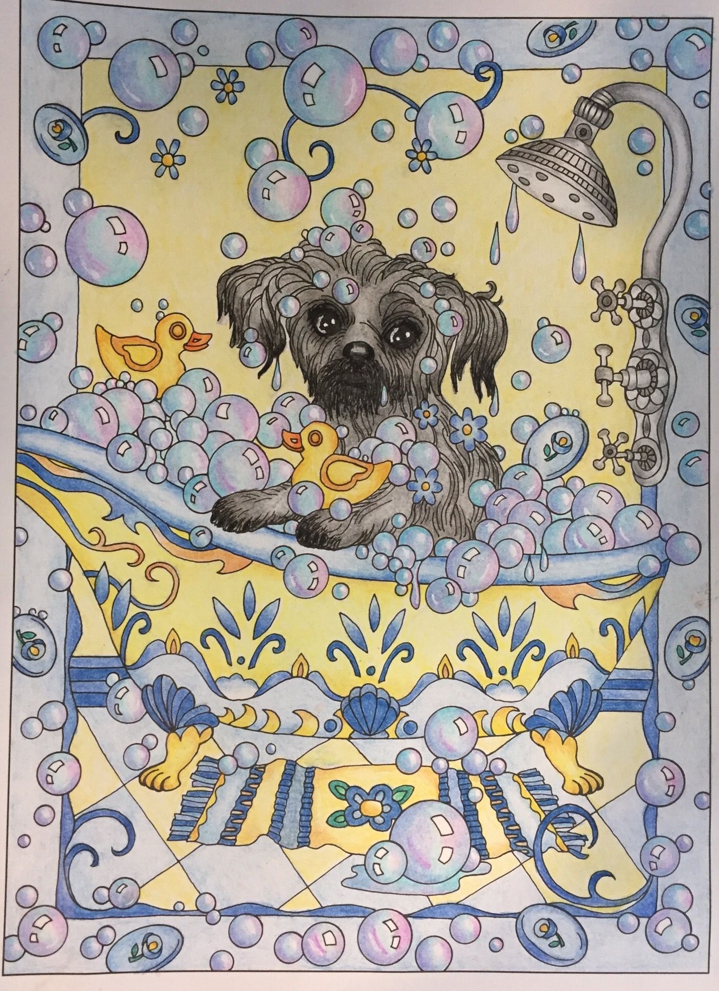 Dazzling Dogs By Creative Haven Moonshine The Shih Tzu Has A Bath