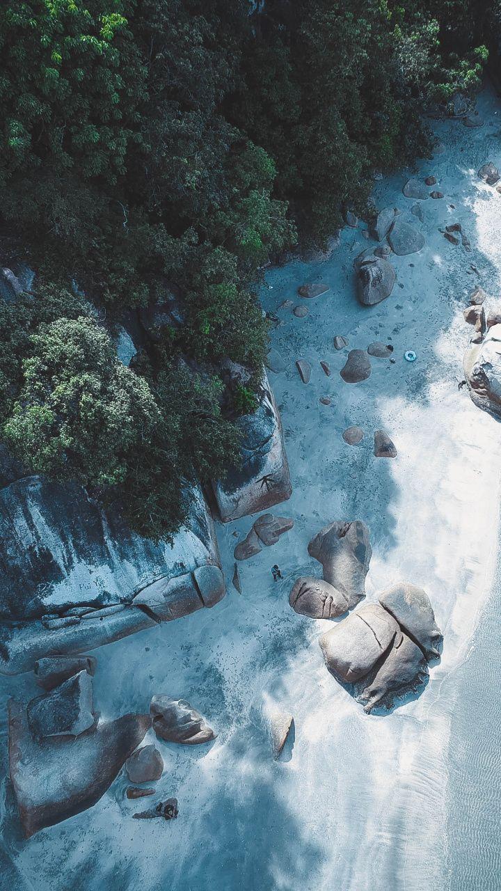 Coast, aerial view, trees, rocks wallpaper View