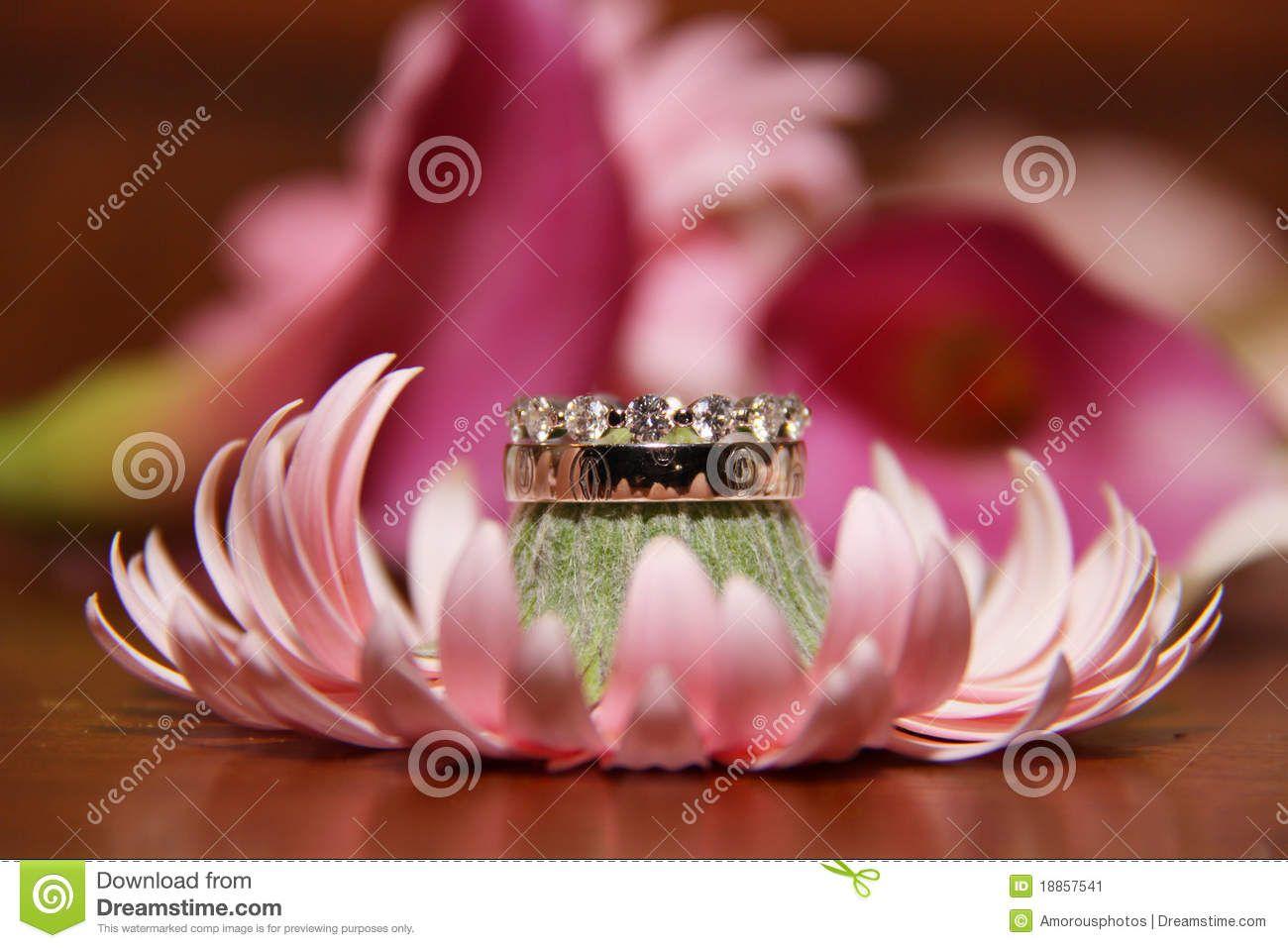 wedding rings on flowers | Bride and Grooms wedding rings stacked on ...