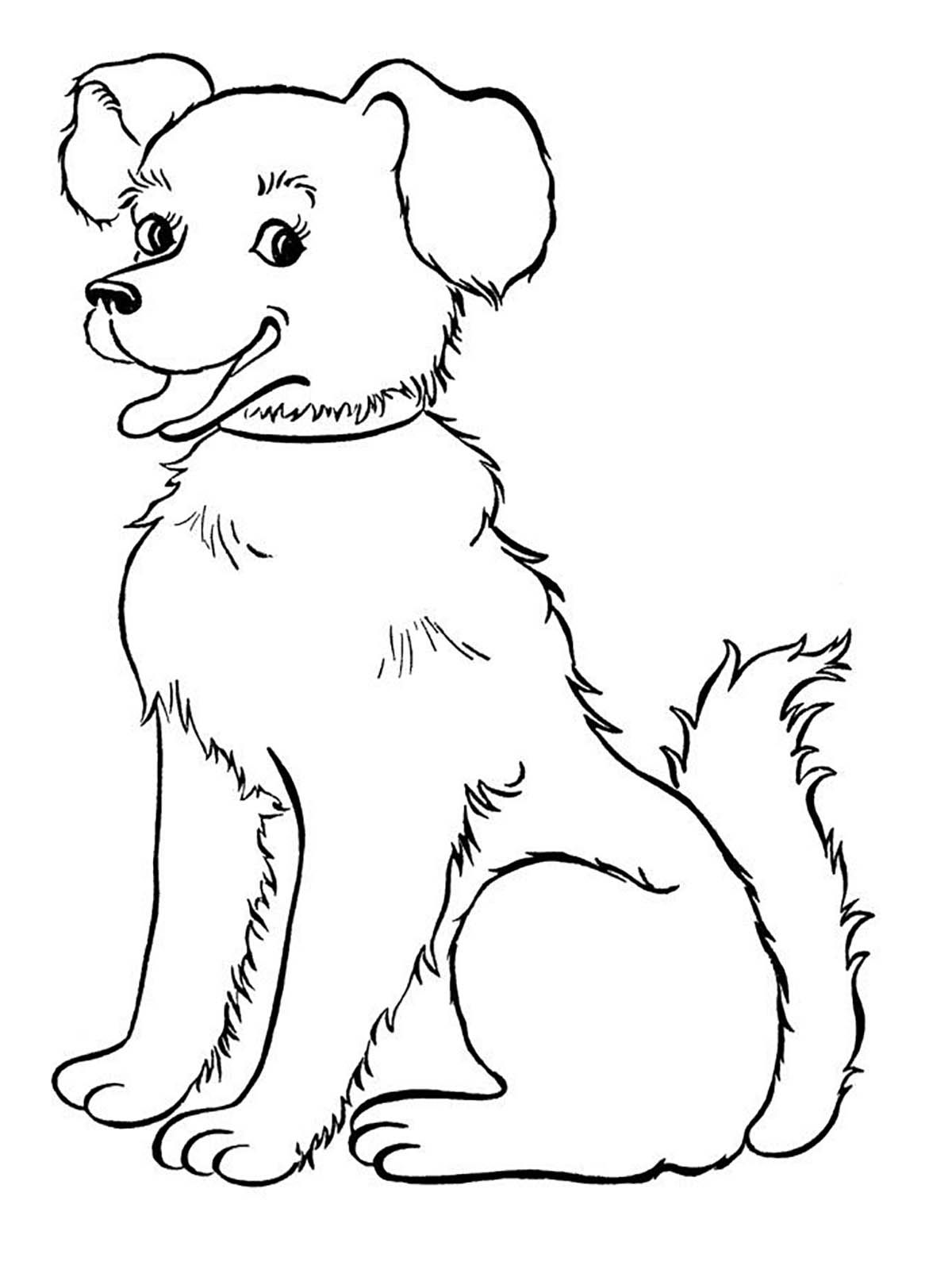 Printable Dog Coloring Page To Print And Color For Free Smiling Dog From The Gallery Dogs Dog Pictures To Color Puppy Coloring Pages Dog Coloring Page