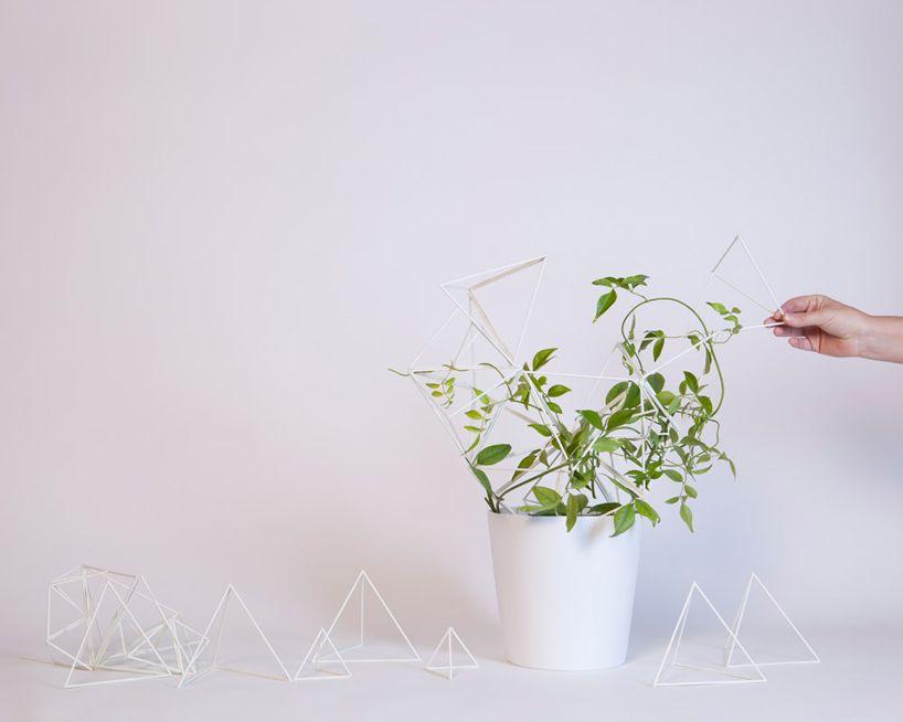 studio kg: parramyd planter