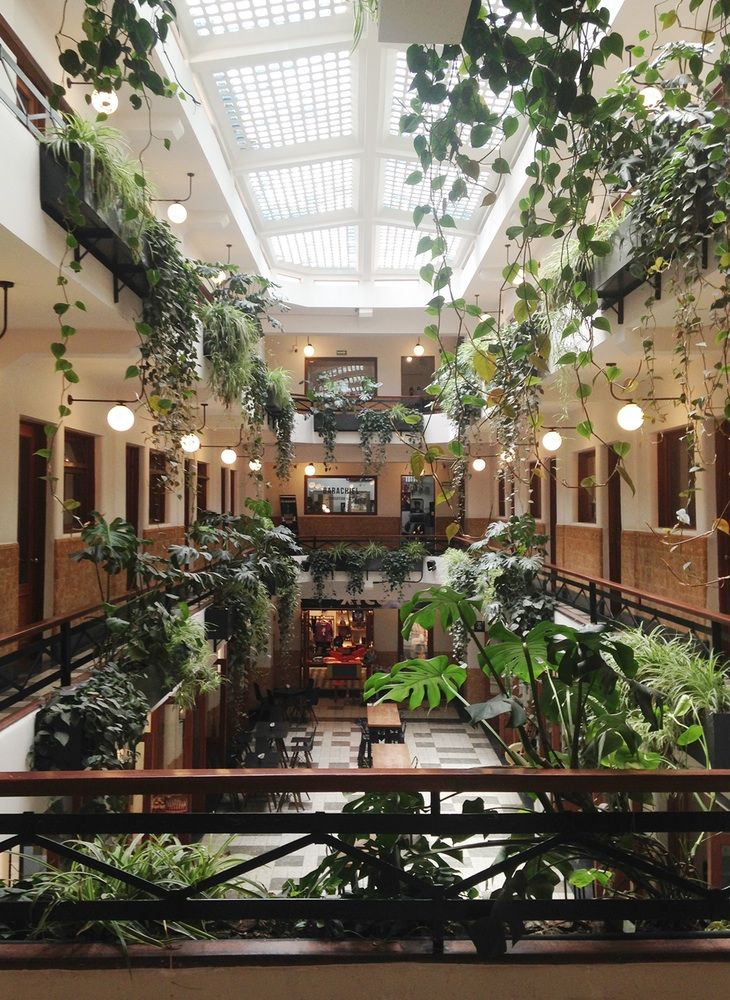 A Bohemian Hotel in the Heart of Mexico City | Bohemian ...