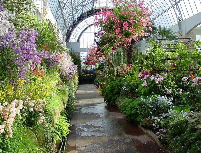 green houses buildings design - buscar con google | greenhouses