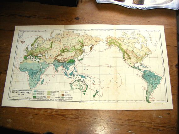Large Antique WORLD Map Of The World S Atlas Plant Florae - 1800s world map