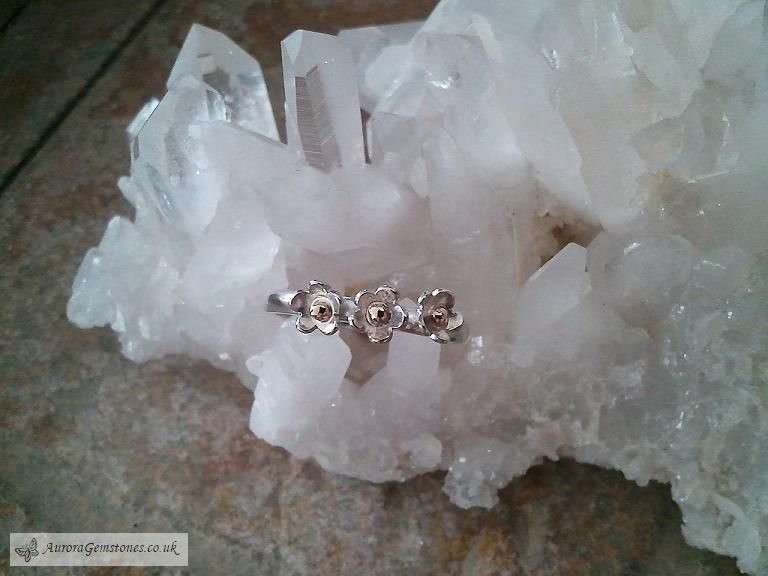 Flowers Ring - silver & 9ct gold.