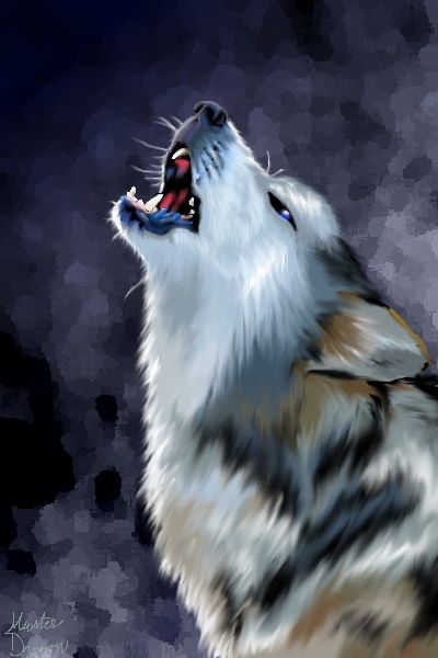 easy to draw wolf - Google Search | ART | Pinterest | Wolf ...