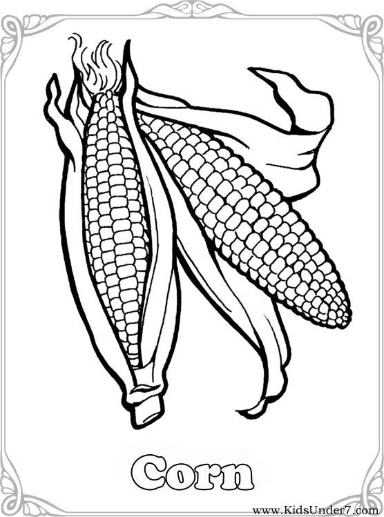 Vegetables Coloring Pages Vegetable Coloring Find Free Coloring Pages Color Pictures In Vege Food Coloring Pages Vegetable Coloring Pages Vegetable Pictures