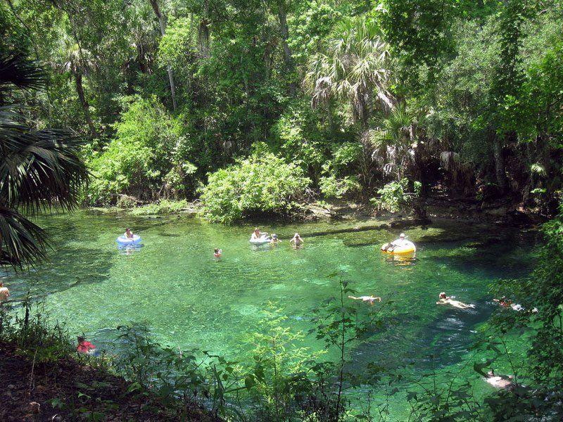 Home Tripstodiscover Places In Florida Best Places In Florida Blue Springs State Park
