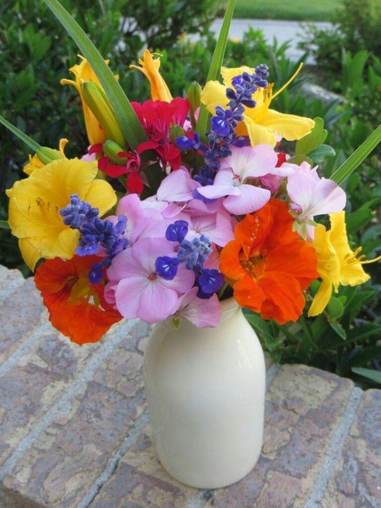 Pin by silvia on flores pinterest june blooms in my utah garden my flower journal izmirmasajfo