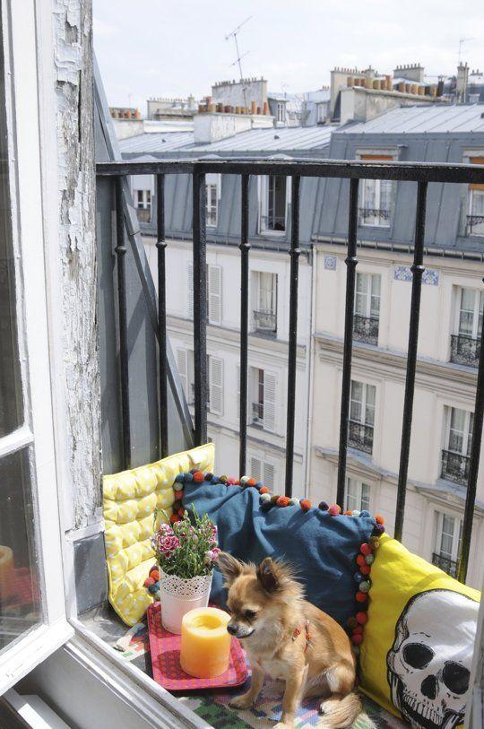 De kussen die zijn gebruikt, zijn zo schattig! Je huisdieren kunnen zo ook genieten van je balkonnetje. Leuke inspiratie voor je balkon!