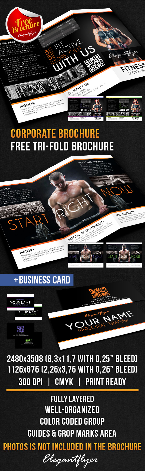 Fitness TriFold Brochure Design V  Free Psd Template Https