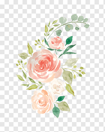 White Rose Vector Roses Clipart Flowers Rose Png And Vector With Transparent Background For Free Download Rose Illustration White Rose Png White Roses
