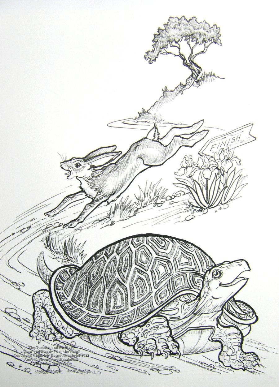 The Tortoise and the Hare Race by HouseofChabrier.deviantart.com ...