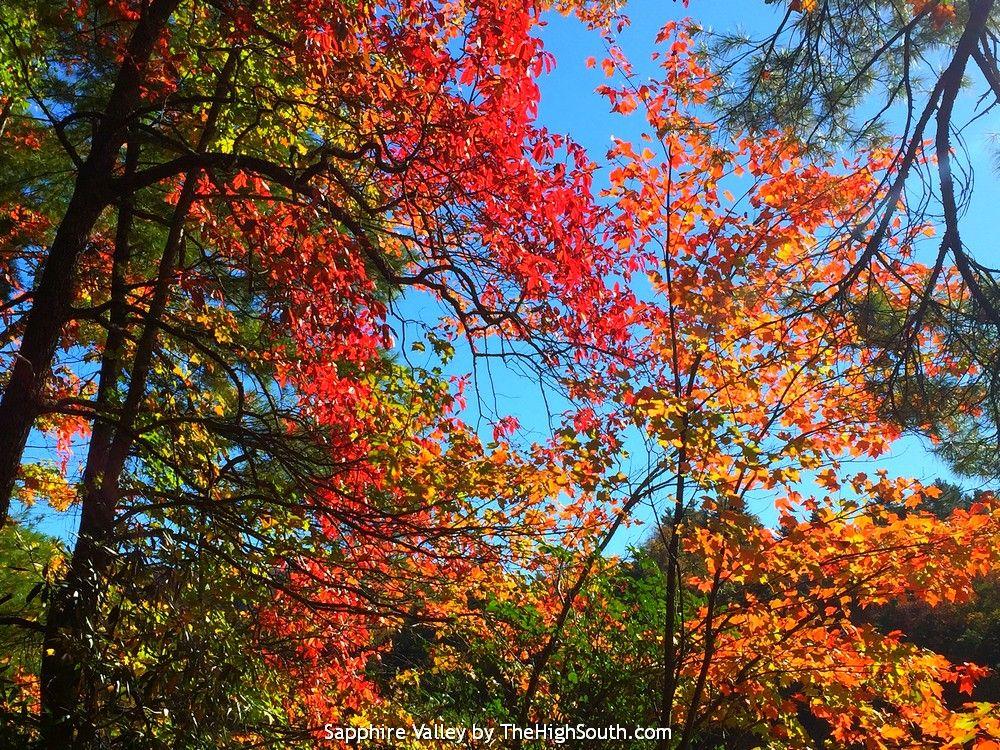 2017 Total Solar Eclipse North Carolina, North Carolina Vacations, Smoky  Mountains,Sapphire Valley Resort, Blue Ridge Cabin Rentals, Golf Ski Tennis  Zip ...