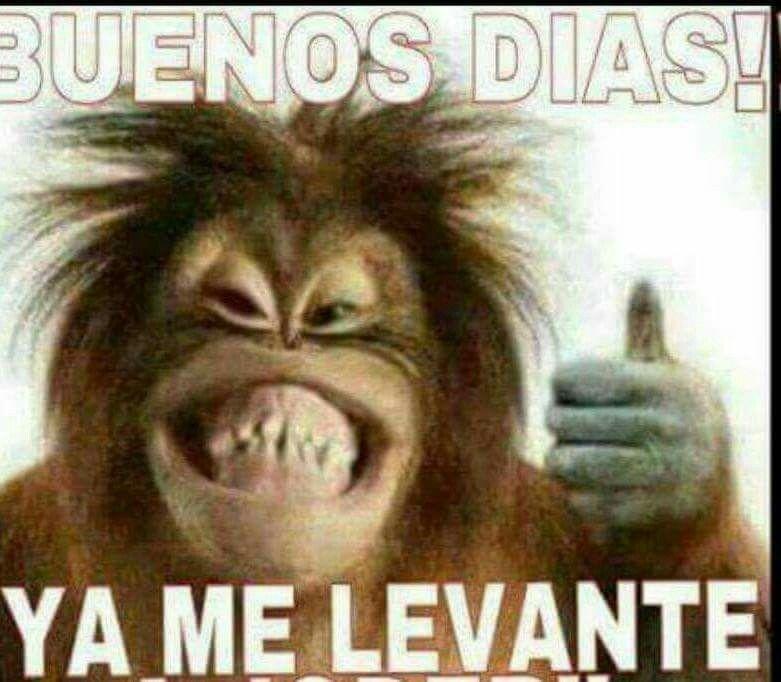 Pin By Antonio Martinez On Saludos Y Celebraciones Mexican Funny Memes Funny Spanish Memes New Memes