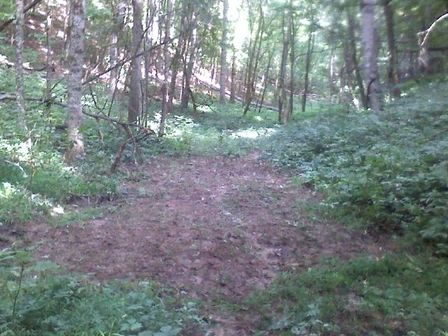 How To Plant A Small Remote Food Plot Whitetail