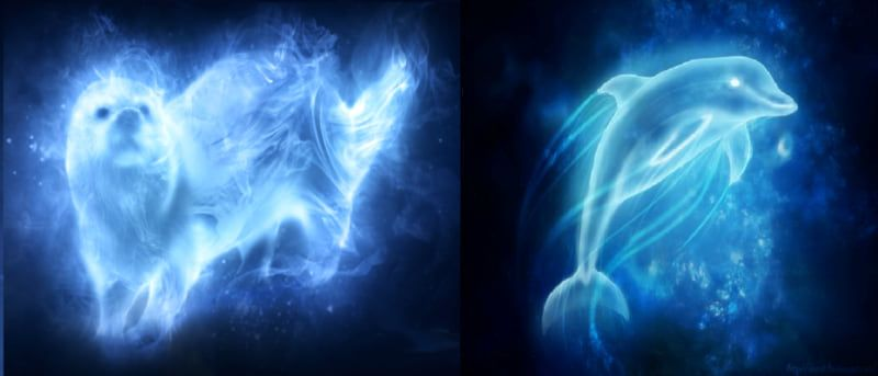 Harry Potter Quiz Everyone Has A Hybrid Of 2 Patronuses What Is Yours Harry Potter Patronus Harry Potter Quiz Harry Potter Personality Quiz
