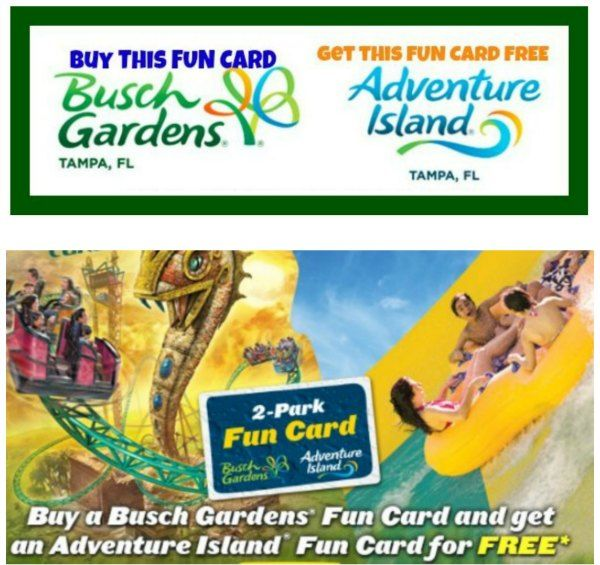 Busch Gardens Fun Card Vs Single Day