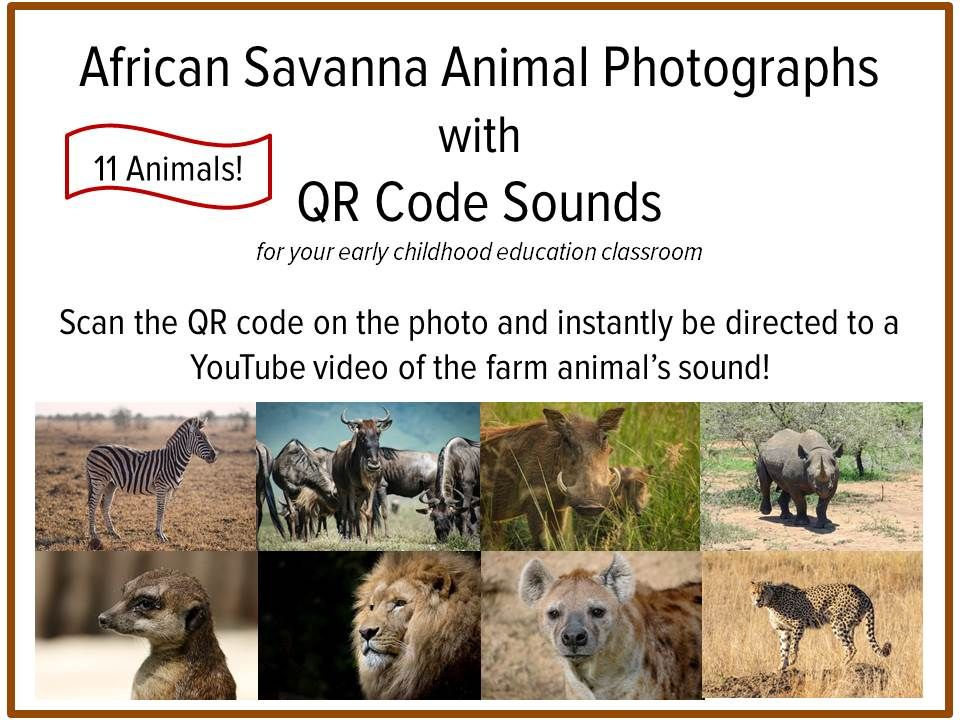 African Savanna Animals Photographs and Sounds with QR