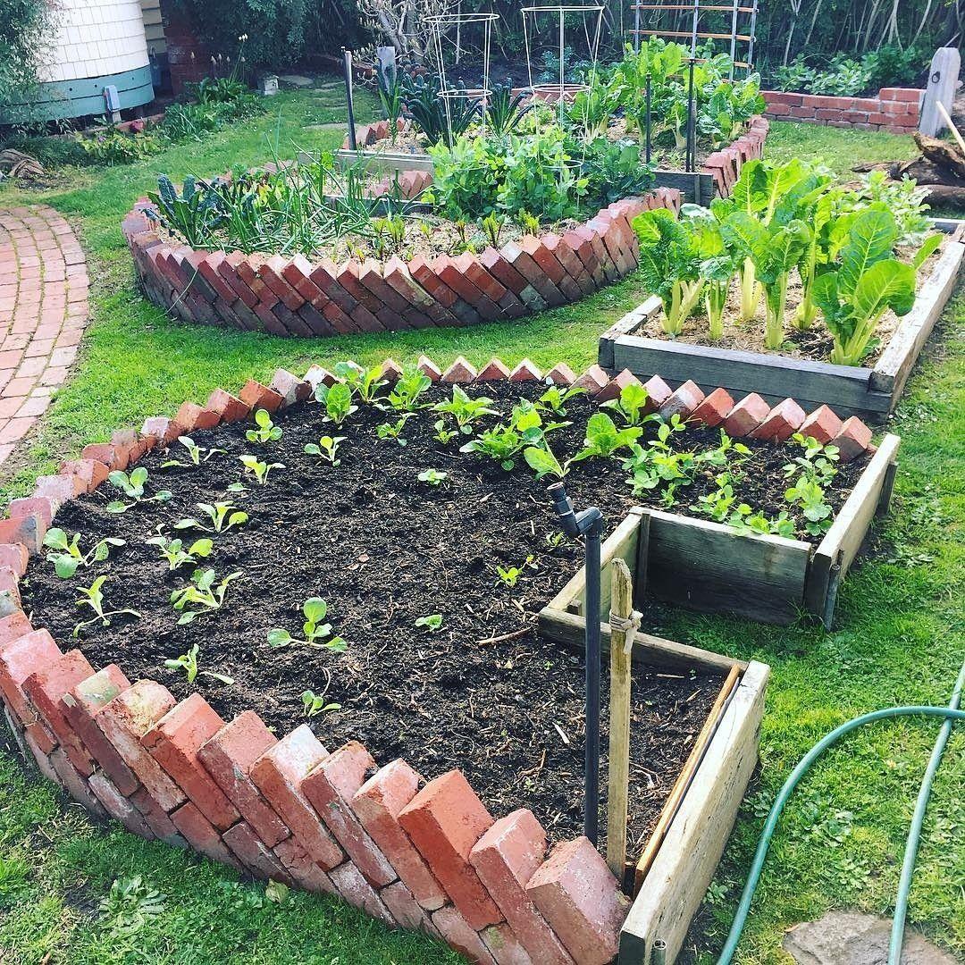 Complete Guide To Container Gardening Brick Garden 400 x 300