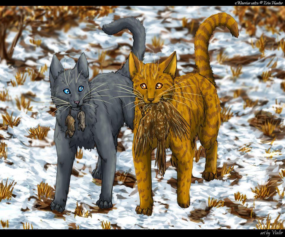 Výsledek obrázku pro warriors cats cinderpaw