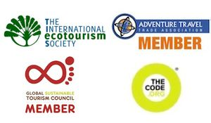 The International Ecotourism Society This Is Who I M Doing My
