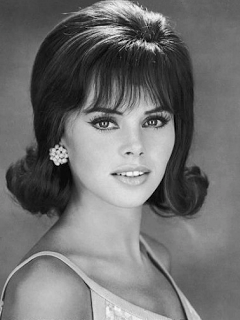 1960S Hairstyles Amazing 1960S Hairstyles For Short Hair  Bridget Bardot Wearing The Beehive