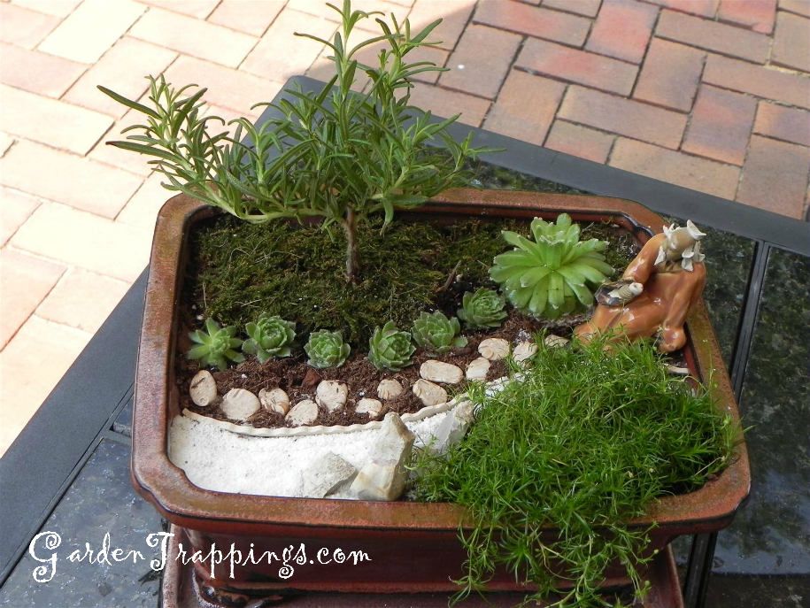 Rosemary bonsai diy miniature zen garden and rosemary for Mini garden landscape design