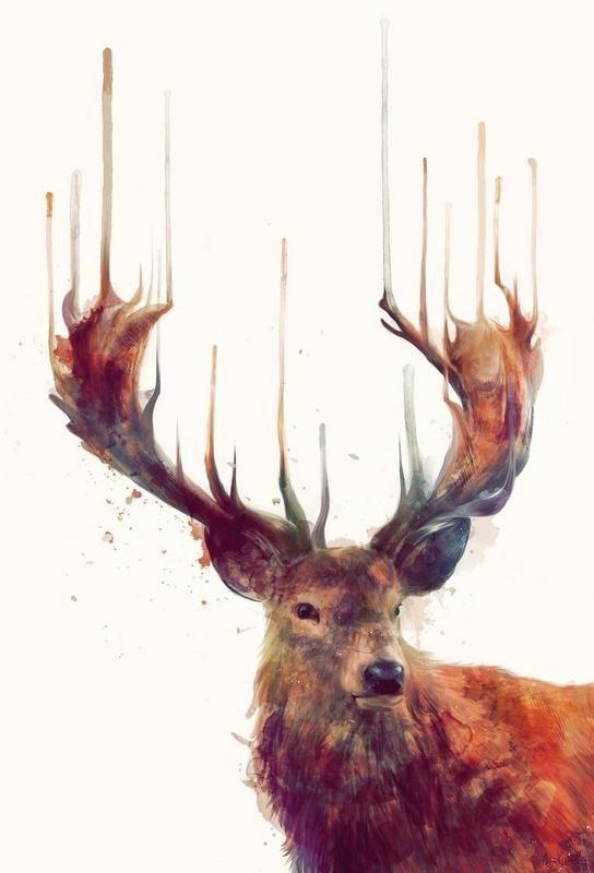 Red Deer als Acrylglasbild