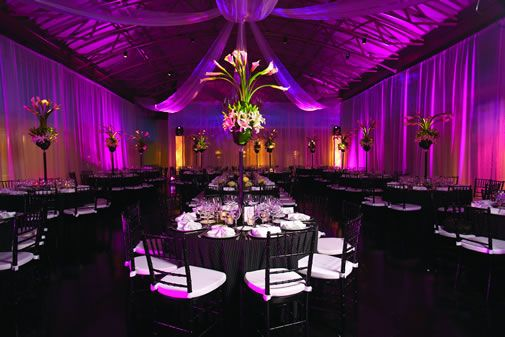 All Black And White With Purple Lighting 3 Wedding Pinterest