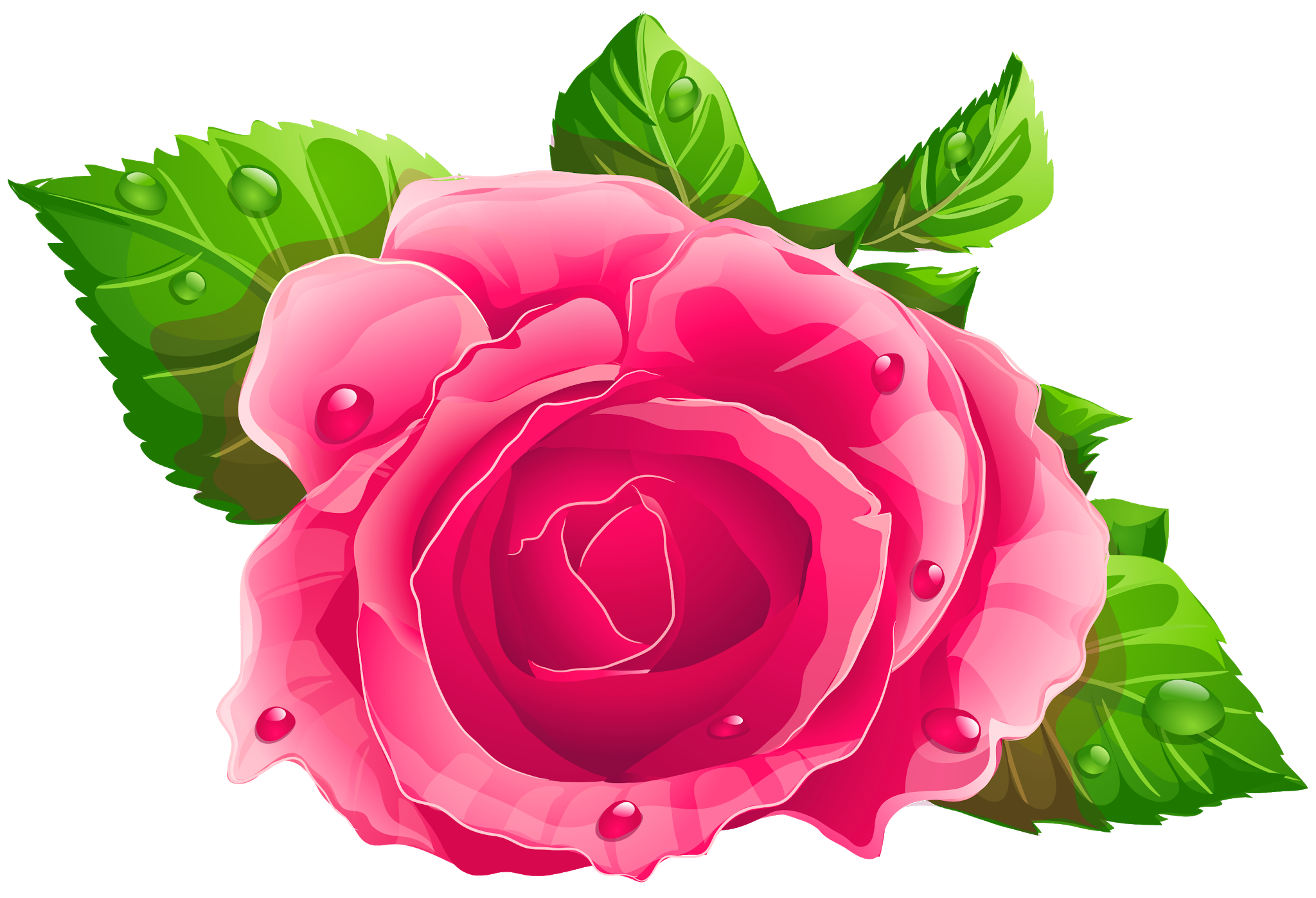 Pink Flowers Rose Beautiful Transparent Pink Rose Png Clipart Picture Pink Rose Png Rose Clipart Flowers