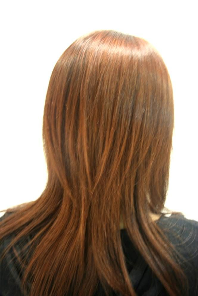 Long Bob Haircuts Back View Pinterest Haircuts Long Layered
