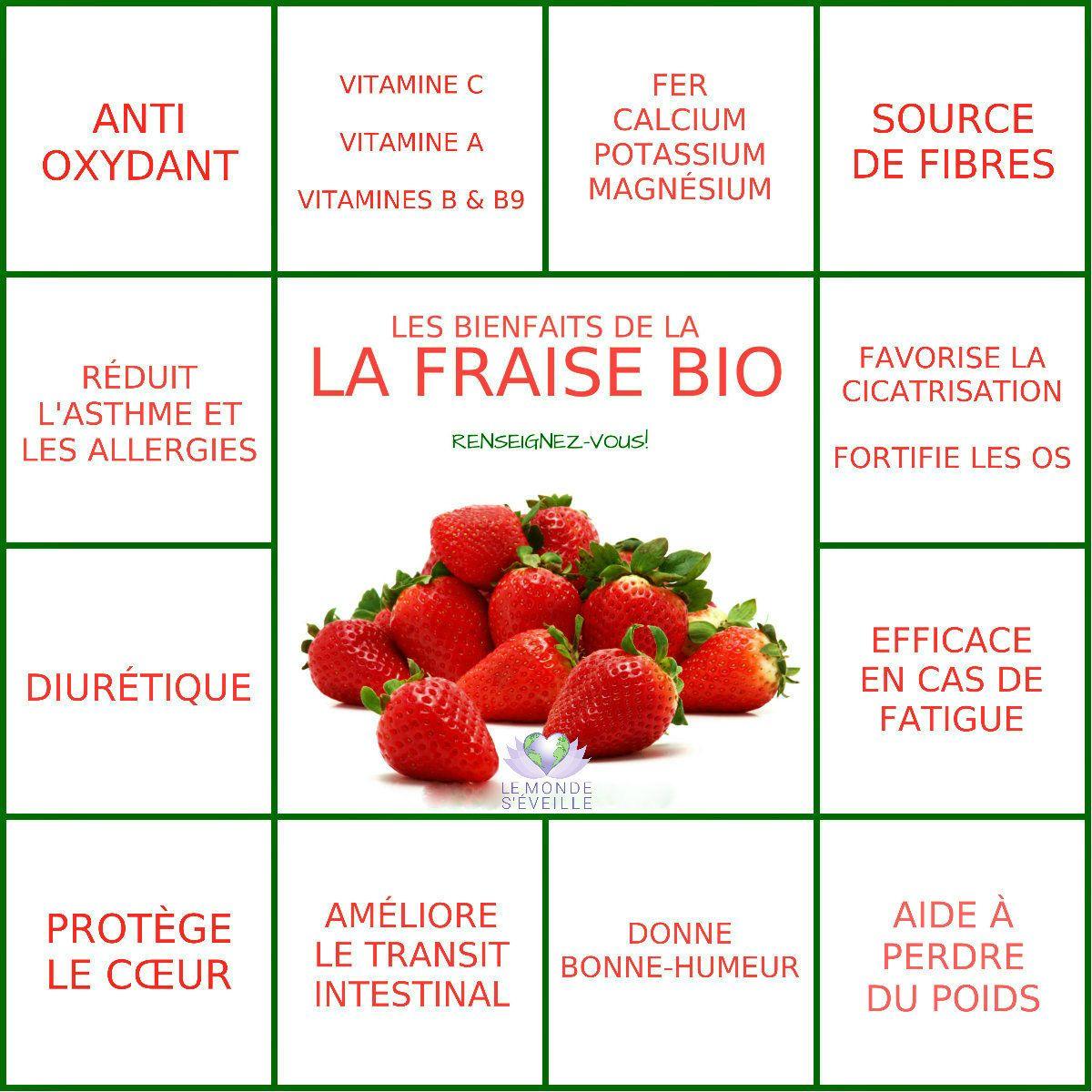 les bienfaits de la fraise | la fraise le monde s'eveille grâce à
