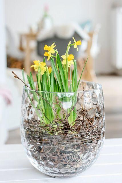 Fridayflowers oder Frühlingsblüher toll in Szene gesetzt