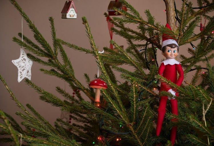 New Pics These 17 Elf On The Shelf Return ideas are super ...