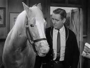 This is a photo of Mr.Ed and the person that, owns him.