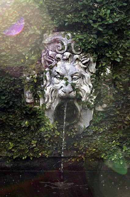 Savannah fountain. Finally my own fountain!