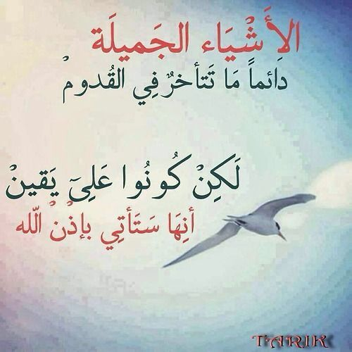 الثقة بالله Islamic Quotes Words Quotes Words